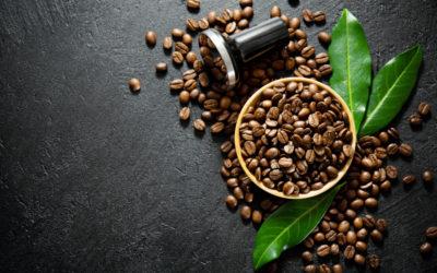 Która kawa ziarnista jest najlepsza?